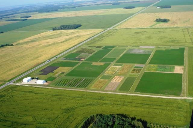 aerial view of Magnusson Research Farm