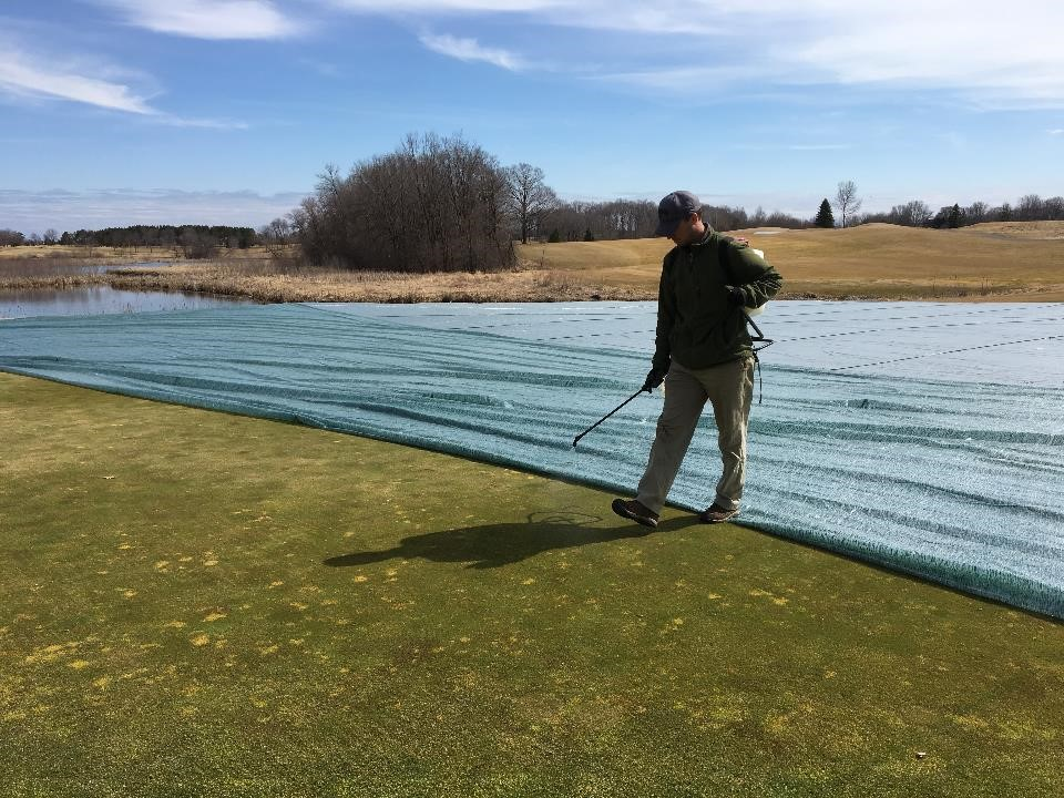 Applying paclobutrozol in early spring to golf course
