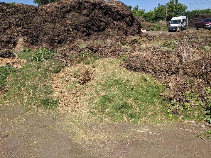 A pile of vegetative debris that includes green grass clippings